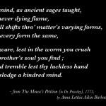 Poem Stanzas